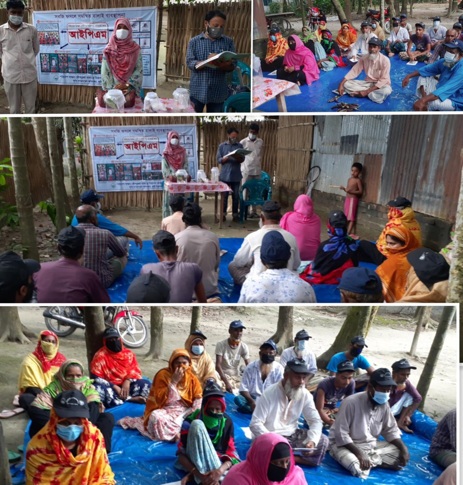 পাবনার সুজানগরের বিরাহিমপুর পরিবেশ বান্ধব কৌশলে কৃষকদের মাঝে প্রশিক্ষণ কর্মশালা